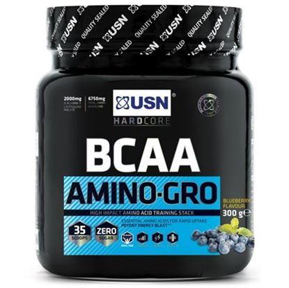 BCAA Amino-Gro 306g