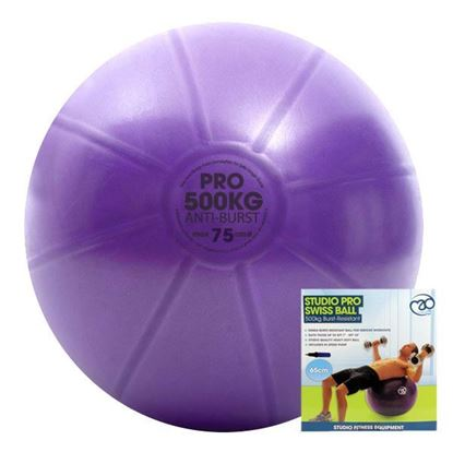 Picture of Mad Fitness: 500Kg Swiss Ball & Pump - 75cm Purple (FBALLSP75K)