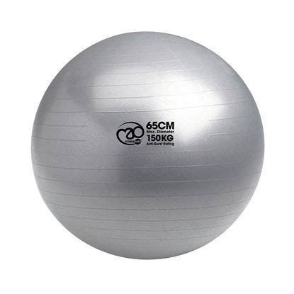 Picture of Mad Fitness: 150Kg Anti-Burst Swiss Ball & Pump - 65cm Silver (FBALL10065)