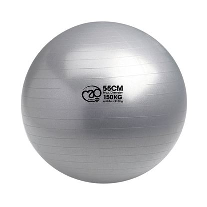 Picture of Mad Fitness: 150Kg Anti-Burst Swiss Ball & Pump - 55cm Silver (FBALL10055)