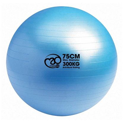Picture of Mad Fitness: 300Kg Anti-Burst Swiss Ball 75cm - Blue (FBALL75)