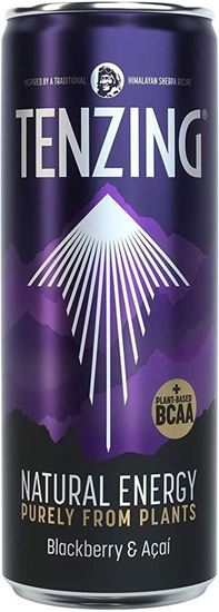 Picture of Tenzing Blackberry & Acai 330ml Can + BCAAs (12 Pack)