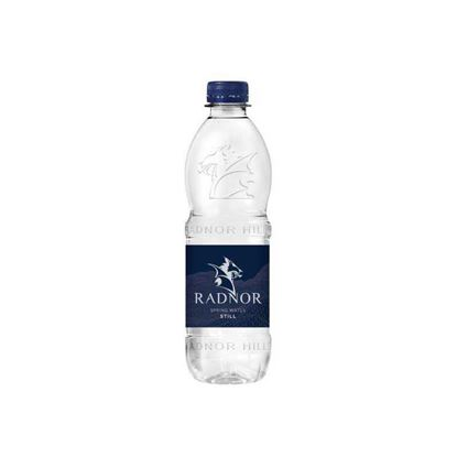 Picture of Radnor Welsh Spring Still Water 500ml Bottle (24 pack)