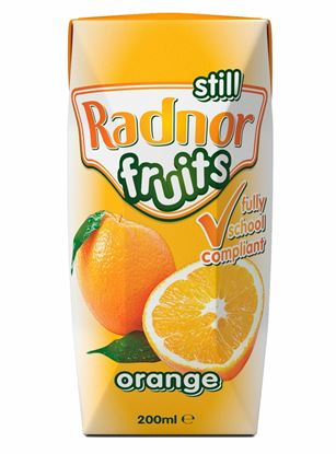 Picture of Radnor Fruit Flavour Spring Still Water 200ml Tetra-pak (24 pack)
